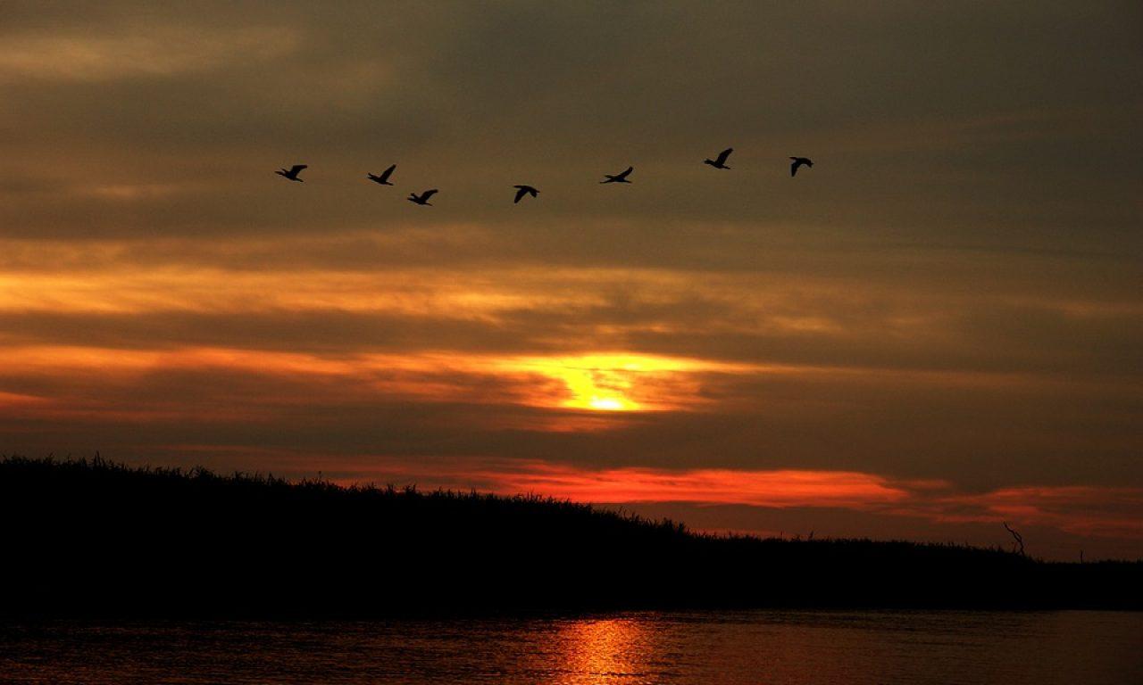 sunset-783727_960_720
